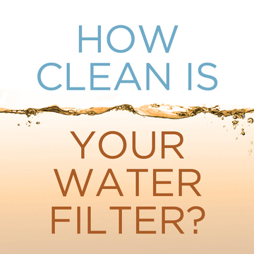 How Clean is Your Water Filter?